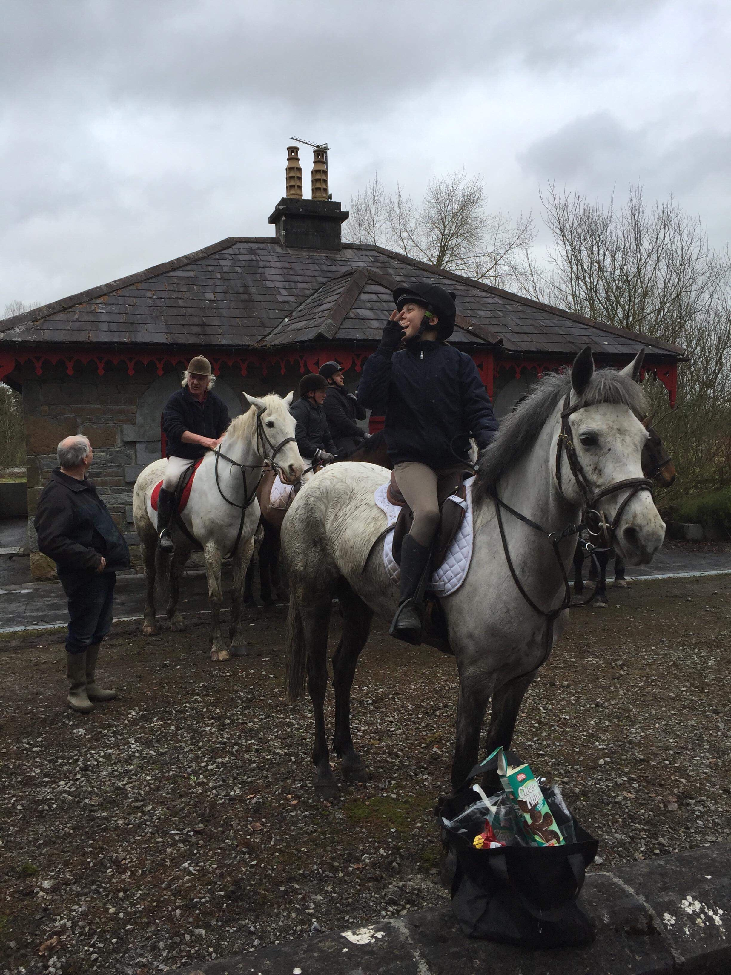Capital a Grey pony out having fun at flowerhill equestrian centre