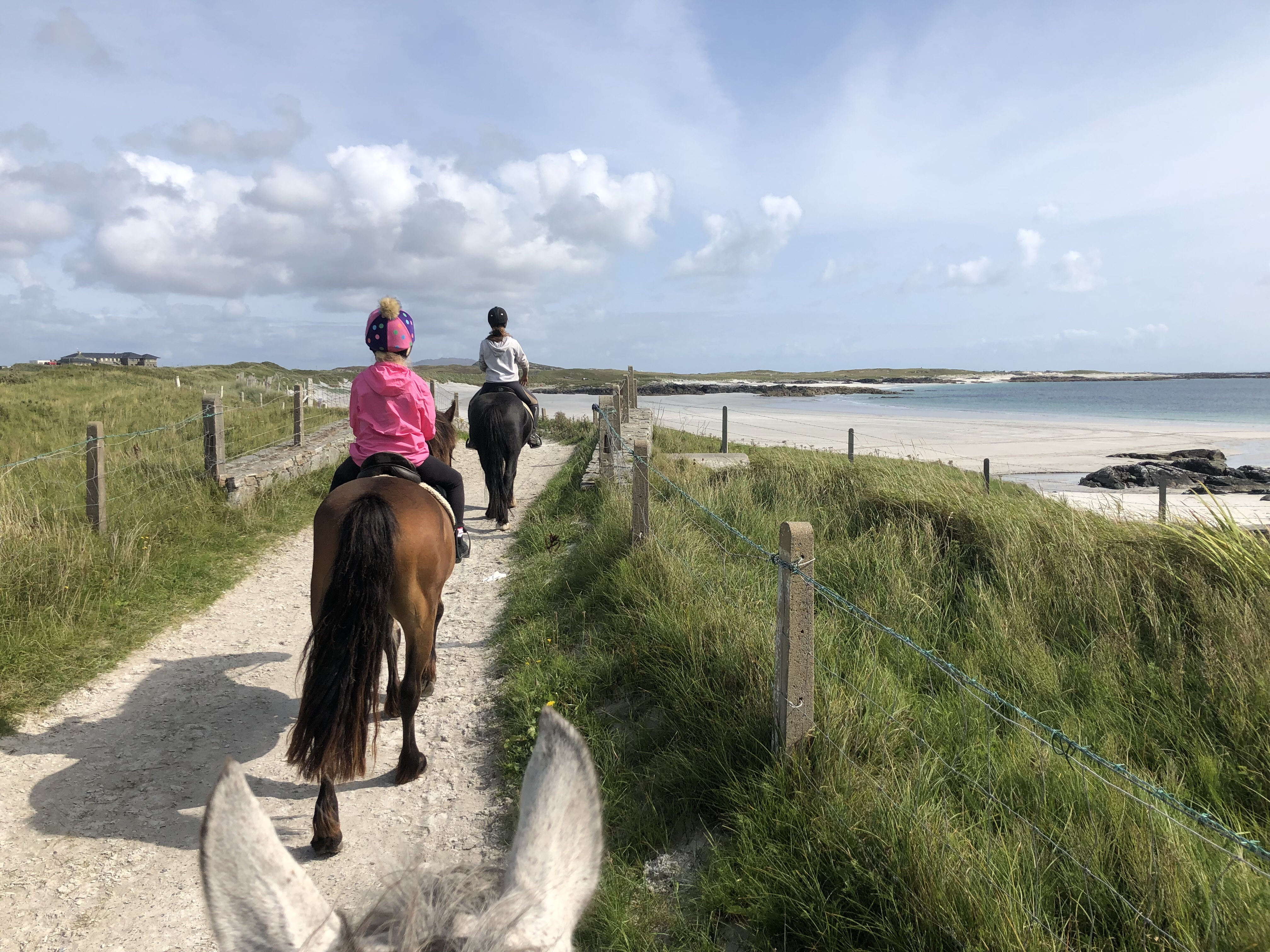 Ponies on their way down to a Connemara beach. What is the right horse for me?